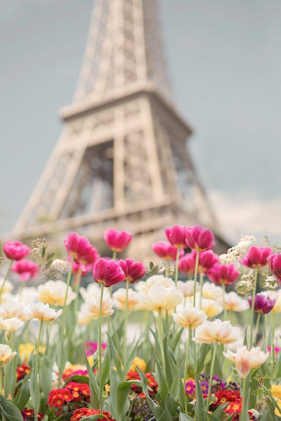 spring paris VII
