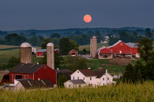 vintage-rd-full-moon
