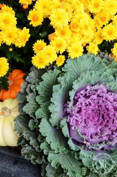 outdoor-fall-decorating-tips-ornamental-cabbage-stonegableblog