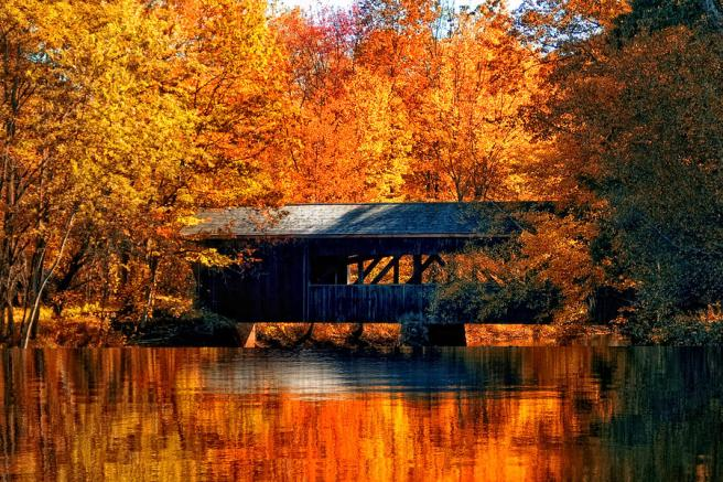 covered-bridge-joann-vitali