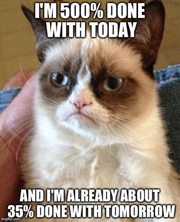 top-40-most-funniest-grumpy-cat-pics-funny-humor