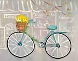 bike_blue_compact