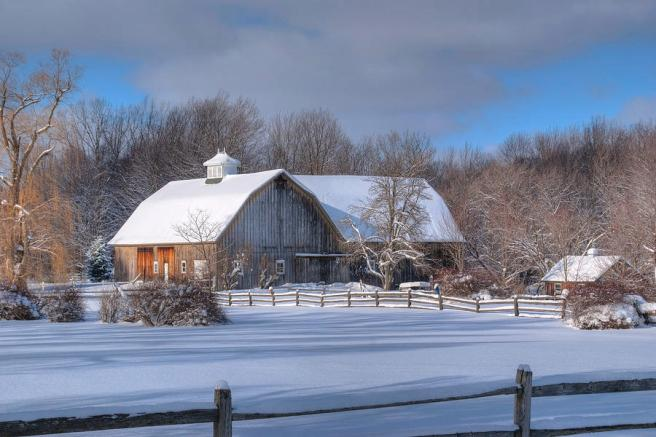 winter-on-the-farm-14586-guy-whiteley