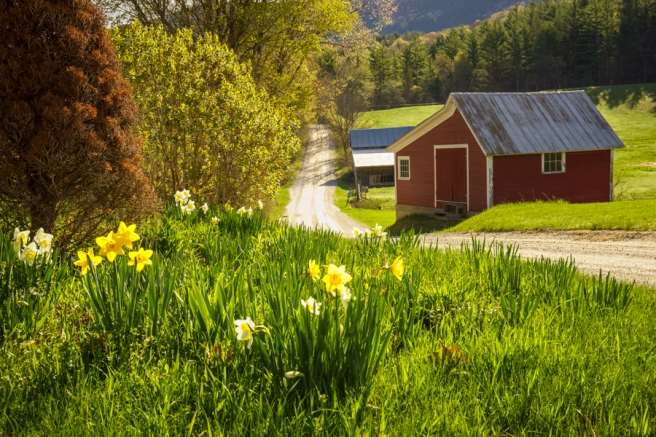 Spring-in-Vermont