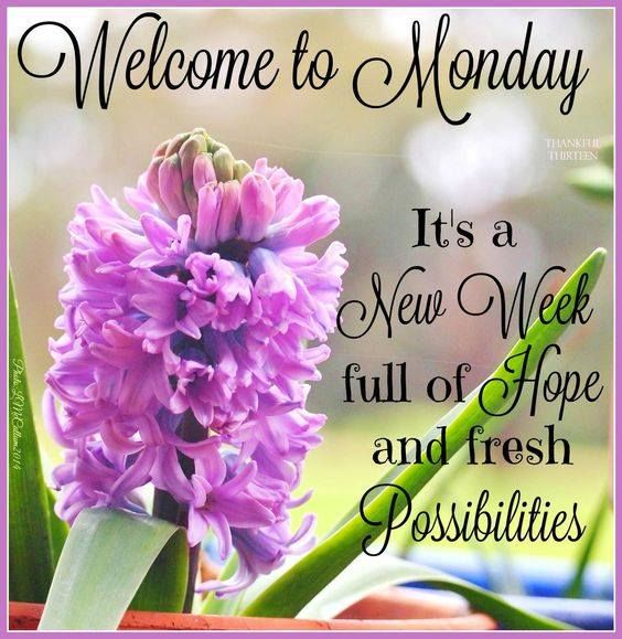 288894-Welcome-To-Monday