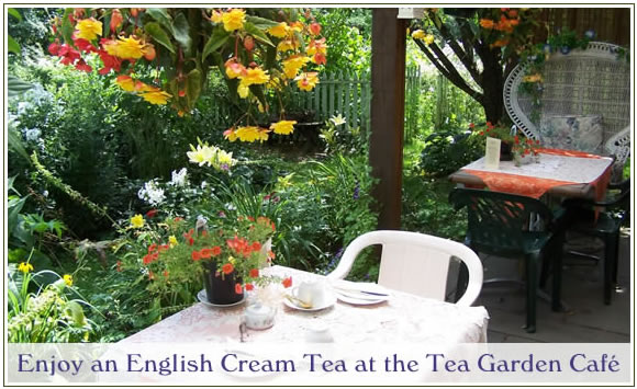 english-cream-tea2